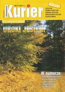 NR 11/2011 (91)