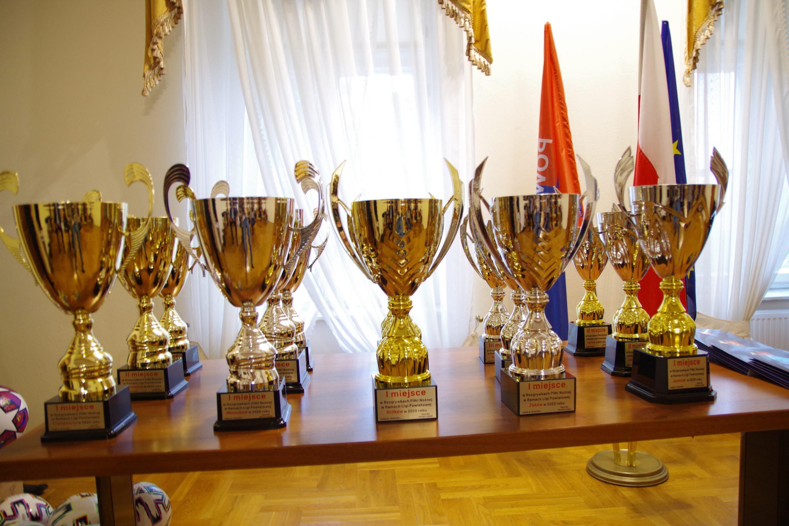 Zdjęcie przedstawia puchary wręczane podczas uroczystości jubileuszowej z okazji 20-lecia rozgrywek w piłce nożnej w ramach Ligi Powiatowej